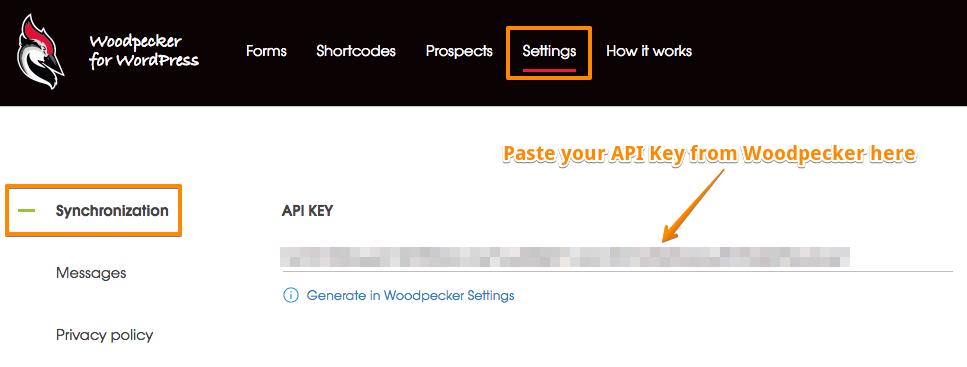Image showing the Settings in the WordPress Woodpecker plugin